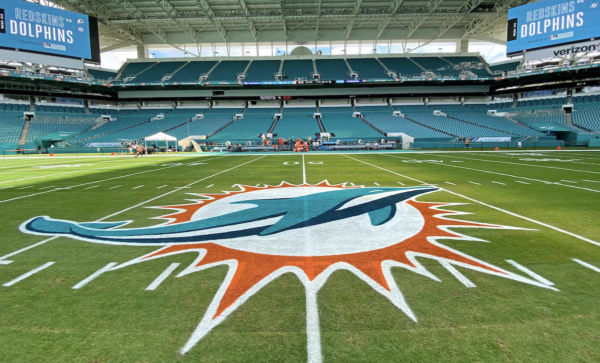 Dolphins stands